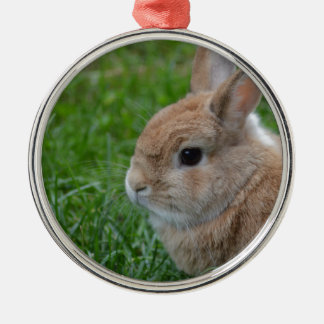 Cute Rabbit Silver-Colored Round Decoration