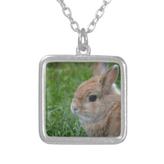 Cute Rabbit Silver Plated Necklace