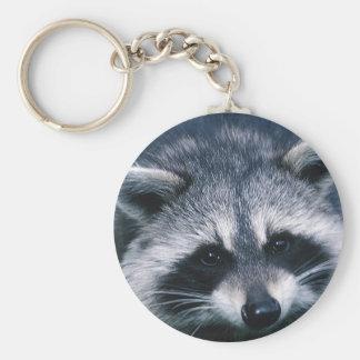 Cute Raccoon Close-Up Key Ring