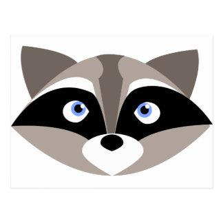 Cute Raccoon Face Postcard