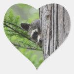 Cute Racoon Heart Sticker