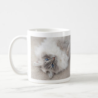 Cute Ragdoll Cat Mug