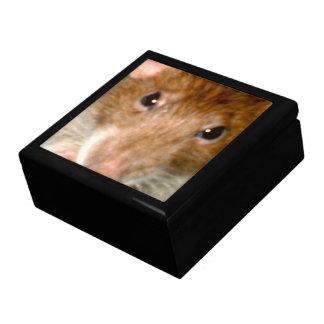 Cute Rat Face Gift Box