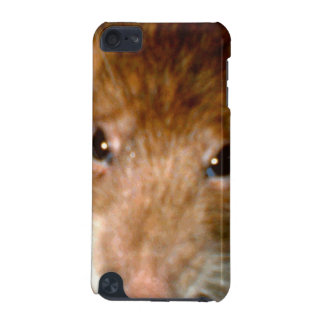 Cute Rat Face iPod Case iPod Touch 5G Cases