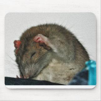 Cute Rat Mouse Pads