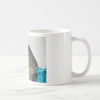 Cute Rat! Coffee Mug