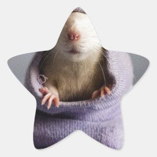 cute rat peek a boo star sticker