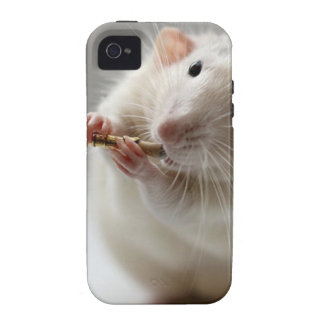 Cute rat playing flute iPhone 4 cover