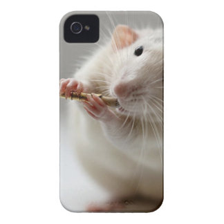Cute rat playing flute Case-Mate iPhone 4 cases