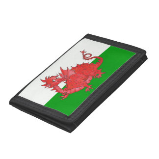 Cute Red Dragon on Green and White Trifold Wallet