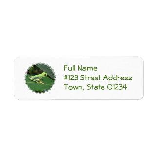 Cute Red Eyed Tree Frog Return Address Label