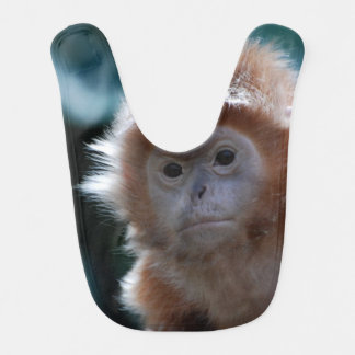 Cute Red Langur Monkey Bib