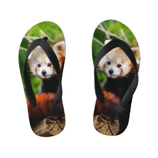 Cute Red Panda Bear Kid's Flip Flops