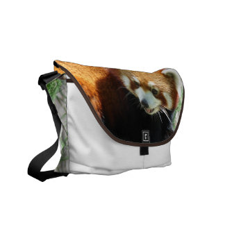 Cute Red Panda Bear Messenger Bag
