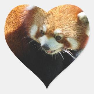 Cute Red Panda Bear Stickers