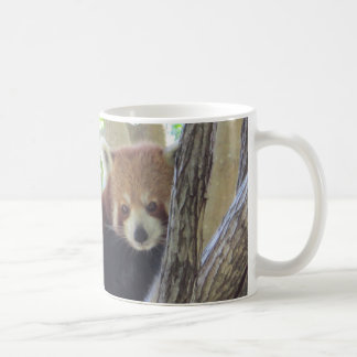 Cute Red Panda Coffee Mug