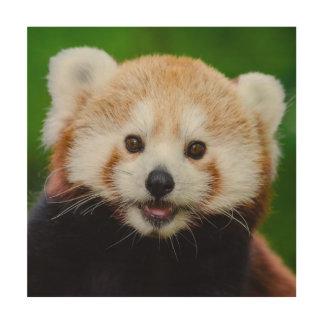 Cute red panda wood print