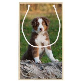 Cute Red Tri Australian Shepherd Dog Puppy Photo - Small Gift Bag