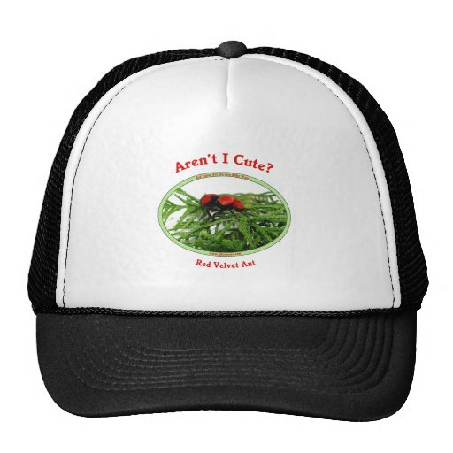 Cute Red Velvet Ant Wasp Mesh Hats