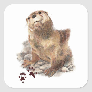 Cute River Otter, Animal Tracks, Wildlife Square Sticker