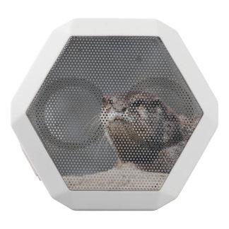 Cute River Otter White Boombot Rex Bluetooth Speaker