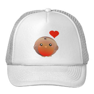 Cute Robin Bird Cap