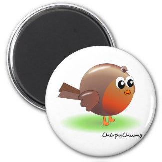 Cute Robin Fridge Magnets