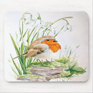 Cute robin mousepads
