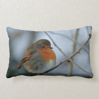 Cute Robin red breast bird photo Lumbar Cushion