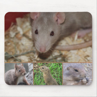 Cute Rodents Mousepad