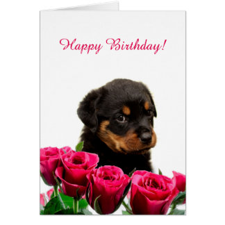 Cute Rottweiler Puppy Red Roses Happy Birthday Card