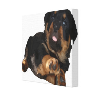 Cute Rottweiler Puppy Vector Stretched Canvas Print