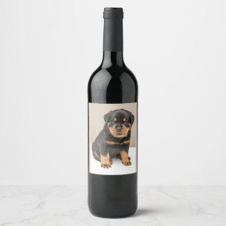 Cute Rottweiler Puppy Wine Label