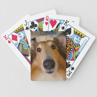 Cute rough collie bicycle playing cards