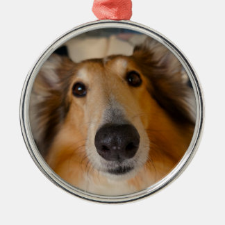 Cute rough collie Silver-Colored round decoration