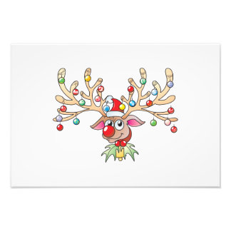 Cute Rudolf Reindeer with Christmas Lights Cards Photograph