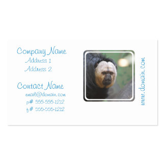 Cute Saki Monkey Pack Of Standard Business Cards