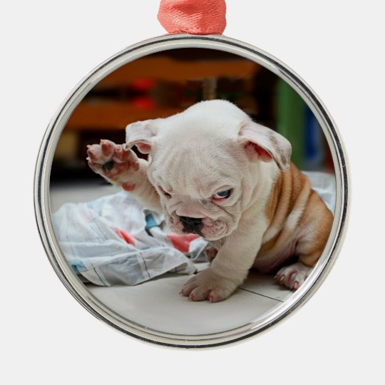 Cute Salute English Bulldog Puppy Christmas Ornament