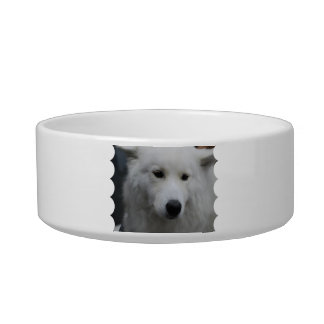 Cute Samoyed Pet Bowl