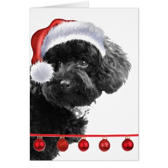 Cute Santa Dog l Holiday Custom Greeting Card