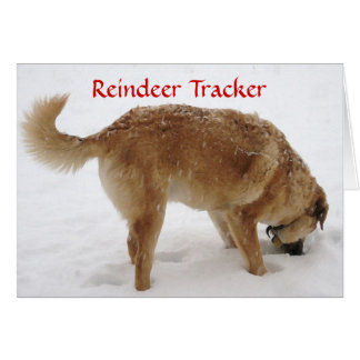 Cute Santa & Reindeer Search & Rescue Dog Greeting Card