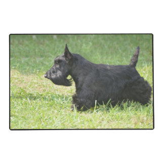 Cute Scottish Terrier Laminated Placemat