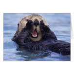 Cute Sea Otter | Alaska, USA Greeting Card