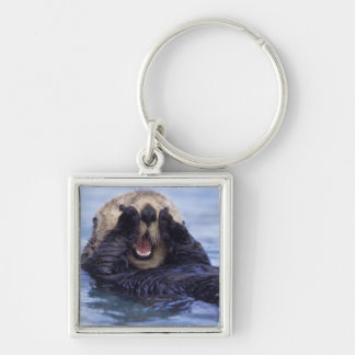 Cute Sea Otter | Alaska, USA Key Ring