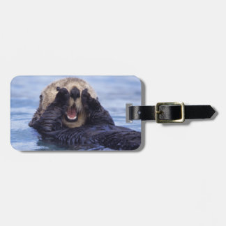 Cute Sea Otter | Alaska, USA Luggage Tag