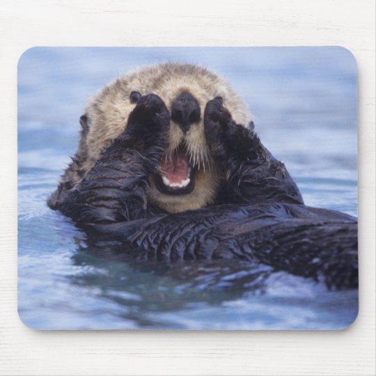 Cute Sea Otter | Alaska, USA Mouse Pad