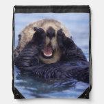 Cute Sea Otter | Alaska, USA Rucksacks