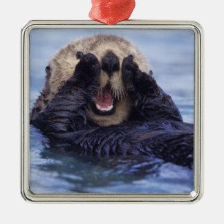 Cute Sea Otter | Alaska, USA Silver-Colored Square Decoration