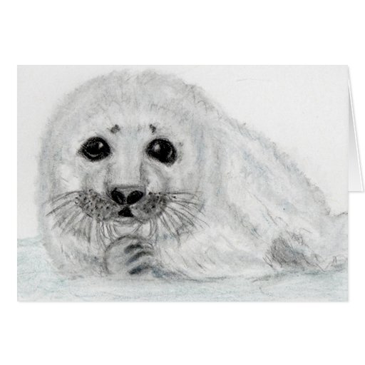 CUTE SEAL PUP BABY ART GREETINGS CARD PERSONALISE