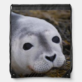 Cute Seal Pup Drawstring Bags